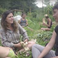 Natalie Bogwalker of Wild Abundance and the Firefly Gathering
