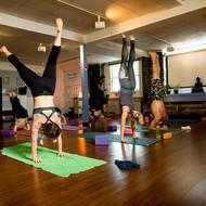 Pure Yoga. Photo: Rose Photo